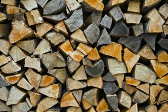 Firewood stacked up to dry showing annual rings